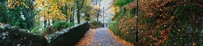 Autumn is a great time to enjoy Devon. Indulge in food festivals, take scenic woodland walks & end the day beside a roaring log fire in a Devon country pub.