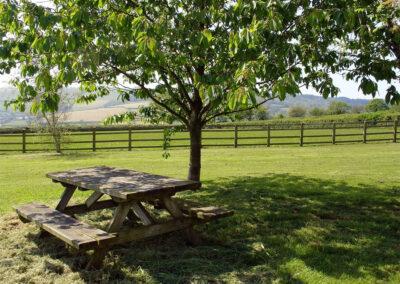 Picnic in the communal garden at Battens, Northleigh Farm, Colyton