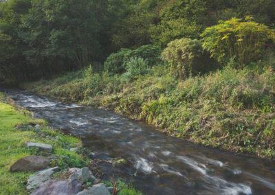 The trout stream alongside Bratton Mill Farmhouse, Bratton Fleming