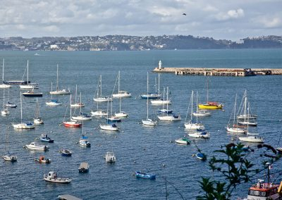 The view from Castaway Cottage, Brixham