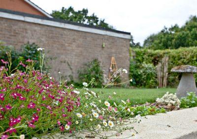 The garden at City Reach, Exeter