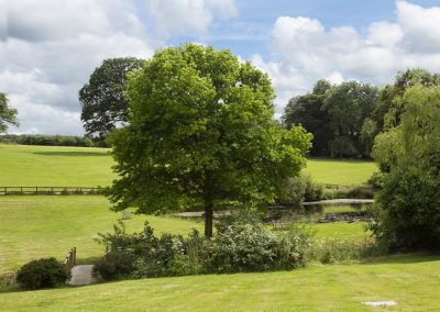 The huge garden & lake at Colleton Hall, Rackenford