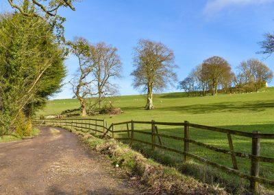 The countryside surrounding Snodwell Farm, Cotleigh