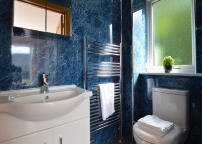 The ground floor WC at Lowenna, Coverack