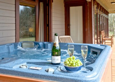 The hot tub @ Oak Lodge, Forest Lakes, Bideford