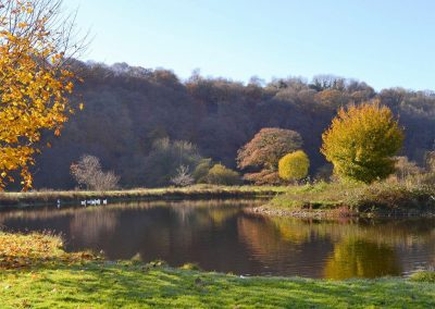 The lake and thirty acres of natural unspoilt grounds at Duvale Cottages, Bampton