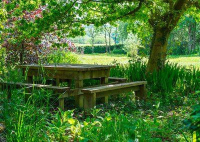 The gardens at Parnacott, Chilsworthy