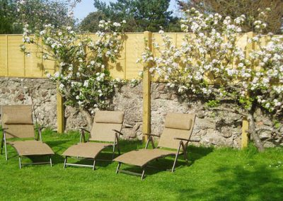 The communal garden @ Old Manor Farm, Torquay with furniture, BBQ & sun loungers