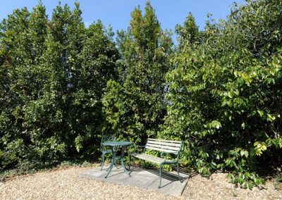 The communal garden at Upper Knutsford, Exmouth